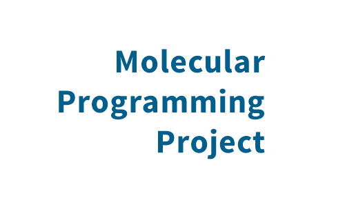 Molecular Programming Project